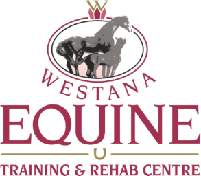 Westana Equine Training & Rehab Center
